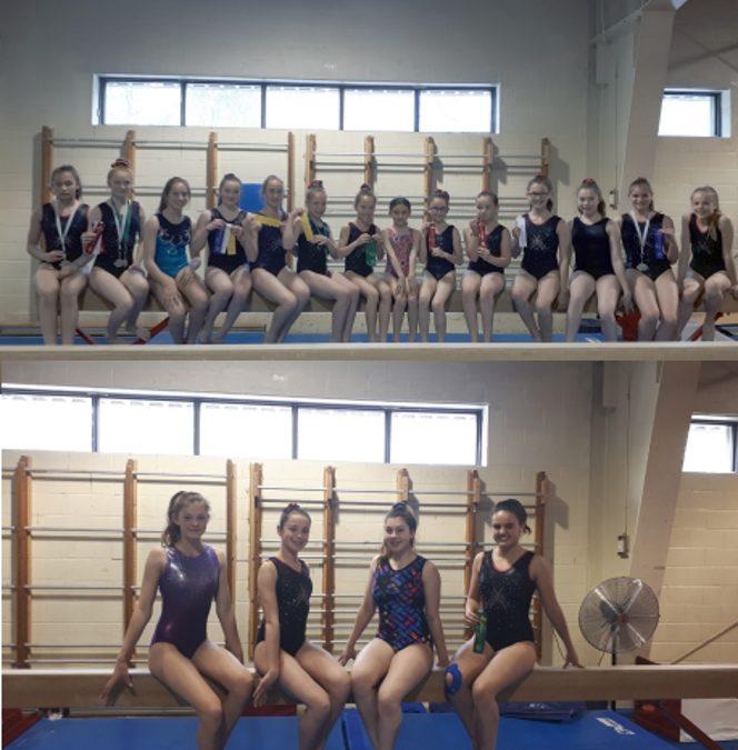 Une récolte de 20 récompenses par nos gymnastes au Challenge des régions!